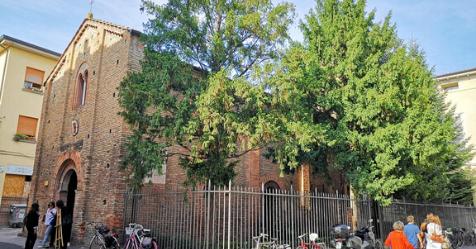 Alcuni interventi alla chiesa deicaduti
